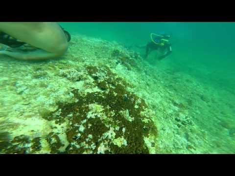 [GoPro] Diving Monopoli, Italy