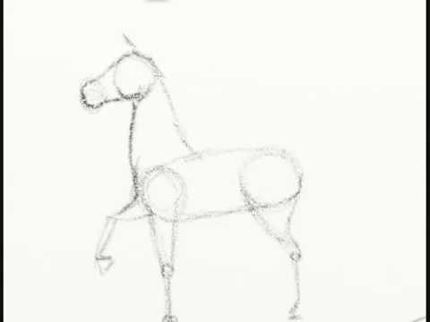 Cómo dibujar un caballo fácil paso a paso - YouTube
