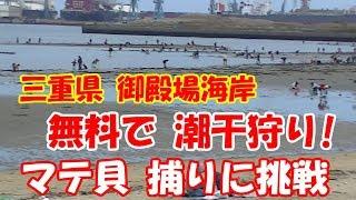 こんにちは、『釣りにいこうよ(釣りいこ)』です。 今回は、三重県にあり...