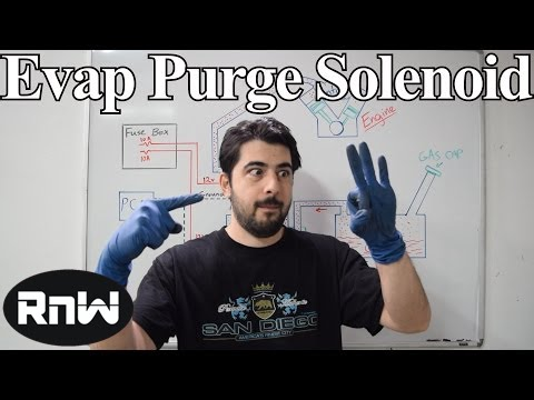 Evap Canister Purge Valve Solenoid Operation, Diagnosis and Testing