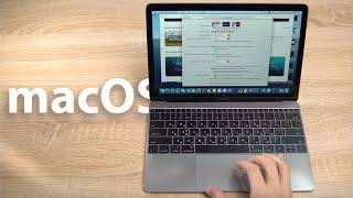 7 фишек macOS Catalina, которые должен знать каждый владелец MacBook!