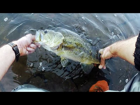 Worm Fishing For BIG LONG ISLAND LUNKERS - Worming For LUNKER LARGEMOUTH BASS