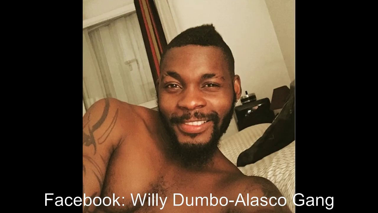 video willy dumbo