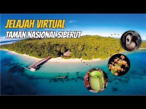 Pesona Kekayaan Taman Nasional Siberut di Kepulauan Mentawai