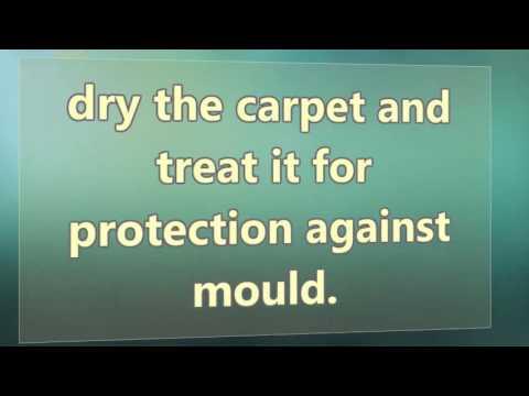 Wet Carpet Drying Melbourne Youtube