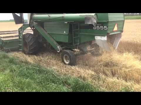 Wheat Harvest 2016 Oliver 5555 Combine