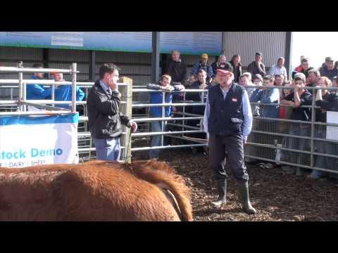Livestock demo 2014