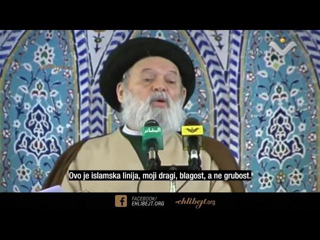 Društvo mira (Ajetullah sejjid Muhammad Hussein Fadlallah)