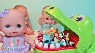 Куклы Пупсики и Крокодил Мистер Зубастик Играют в Игру Челлендж. Зырики ТВ