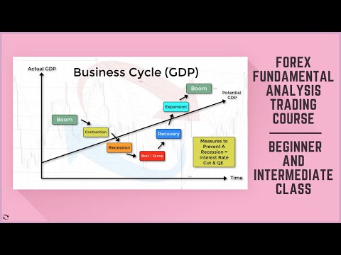 Forex Fundamental Analysis Trading Course - Beginner and Intermediate Traders