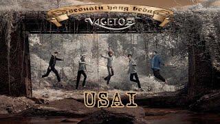 Vagetoz - Usai