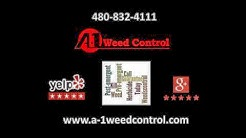 Weed Removal and Control Gilbert AZ A-1