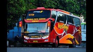 RECOMENDED Paling BARU DIJALURNYA Nyobain BUS SUGENG RAHAYU JETBUS 3 Bau PLASTIK 1
