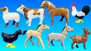 PLAYMOBIL Country Farm Animals Pen and Hen House Building Set Build Review