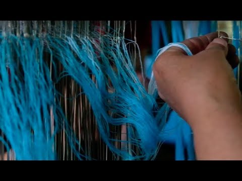 The problem with SILK FARMING