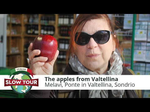 The apples of Valtellina | Italia Slow Tour