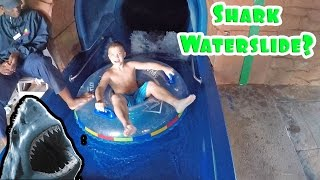 Repeat youtube video SHARK INSIDE A WATERSLIDE?