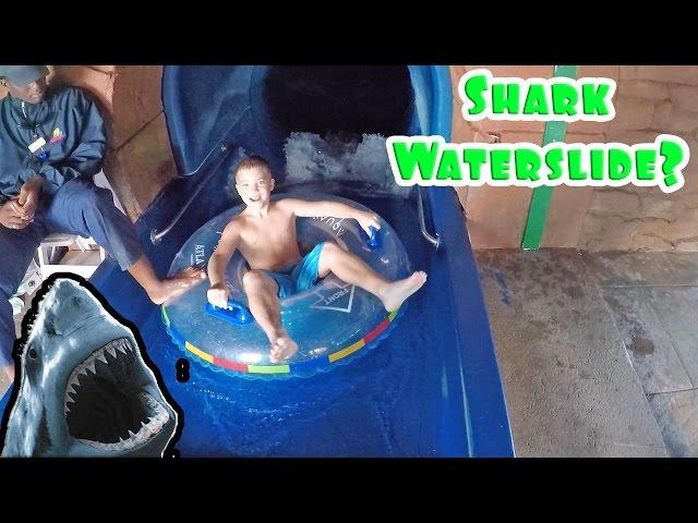 SHARK INSIDE A WATERSLIDE?