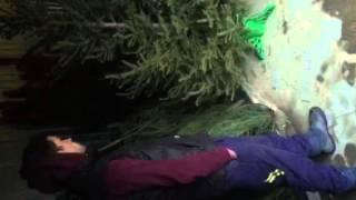 Как правильно держать Новогоднюю Ёлку дома, чтобы она очень долго стояла(, 2015-12-22T17:17:04.000Z)