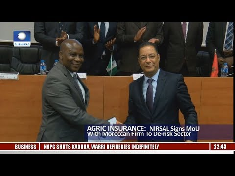 NIRSAL Signs MoU With Moroccan Firm To De-risk Agric Sector Pt.3 |News@10| 14/10/17