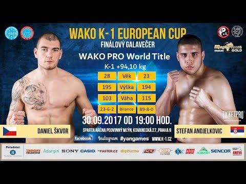 DANIEL ŠKVOR vs. STEFAN ANDJELKOVIC - WAKO-PRO K-1 world title