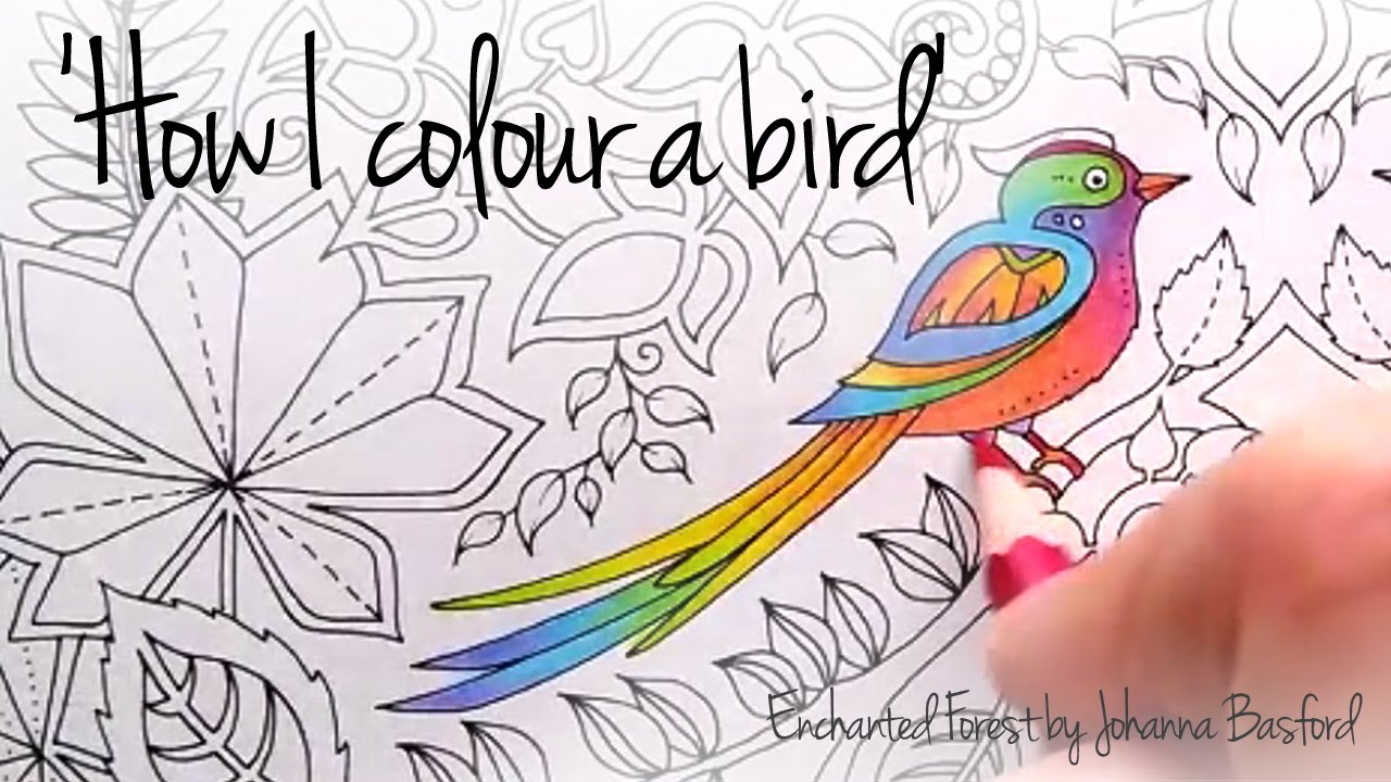 How I colour a bird (blending colours); Enchanted Forest - Johanna ...