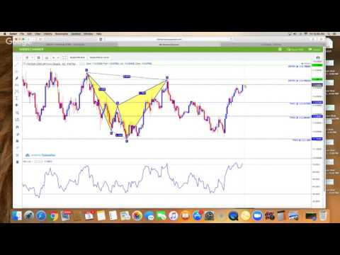 How to Trade Forex For Beginners with iMarkets Live Harmonic Scanner Review (Support & Resistance)