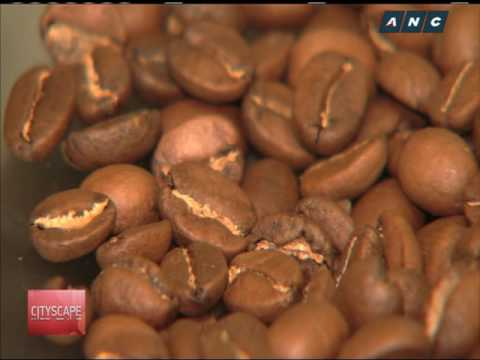 Quaint QC cafe features specialty Filipino coffee