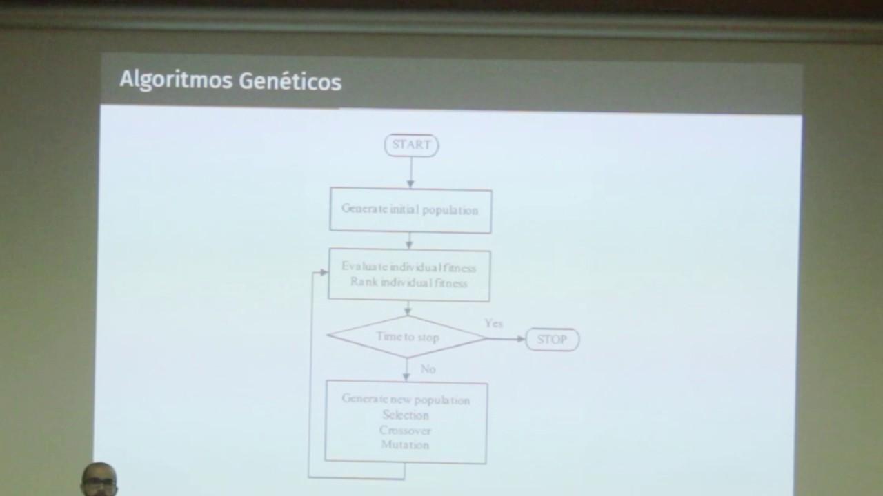 Image from Optimización automática de modelos bioinspirados de visión