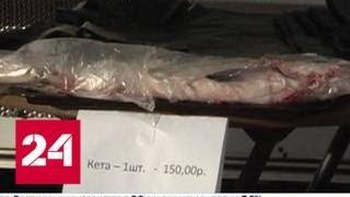 видео Купить автомобиль в Анадыре