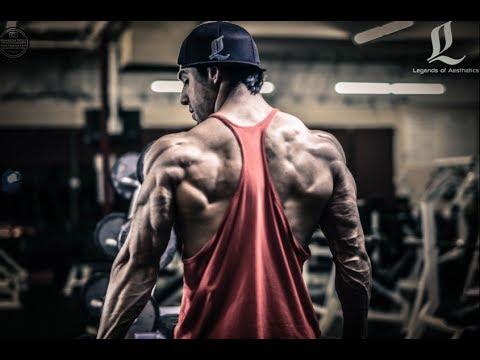 Chris Lavado Biceps