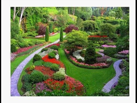 Garden Ideas from Pinterest | it's amazing what you can ...