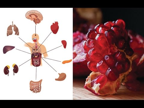 Have you heard of Pomegranate? Know the benefits of this fruit for your health