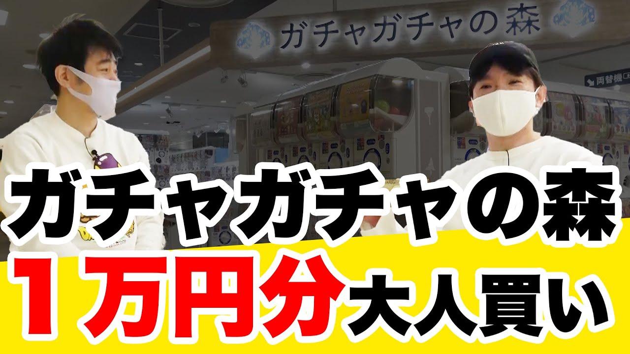 【1万円ガチャ】ガチャガチャの森を貸切!よゐこが1万円分ガチャを回す【大人買い】