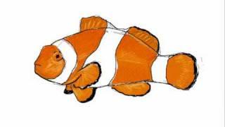 Como dibujar un pez payaso - Dibujos de animales