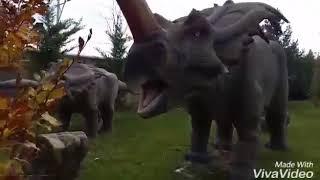 80 Bide Devri Alem Dinozorlar