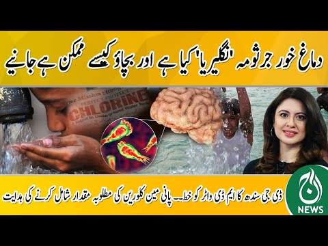 Deaths From Naegleria Virus In Karachi   What is 'Naegleria' And How To Prevent It   Aaj Pakistan