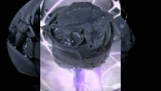 чёрные цветы