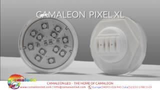 CAMALEON LED PRODUCTS