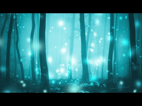 Rain in the Fairy Forest Ambience - With Rain Sound for Study and Relax