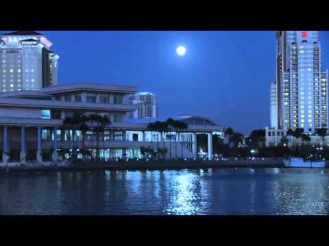 Tampa Convention Center - Tampa Florida - Tampa Skyline - HD Stock Footage