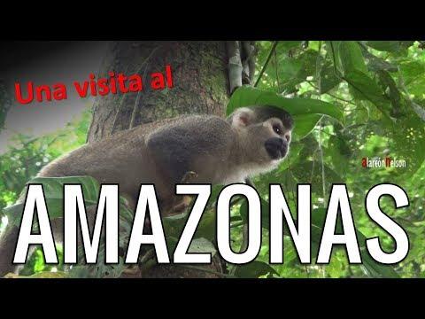 Un viaje a la fábrica de oxígeno más grande del planeta: EL AMAZONAS
