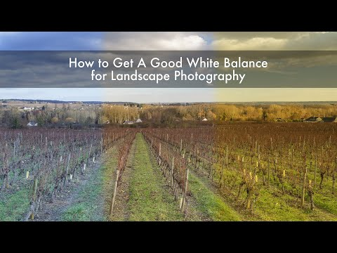 Landscape Photography - How to Get A Good White Balance