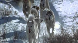 Leonard Cohen - By the rivers dark (El último cazador) escena 2/2