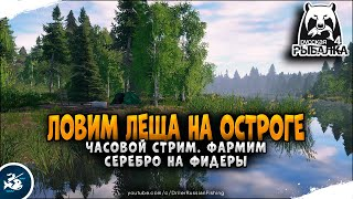 Русская Рыбалка 4 Фарм серебра на Старом Остроге