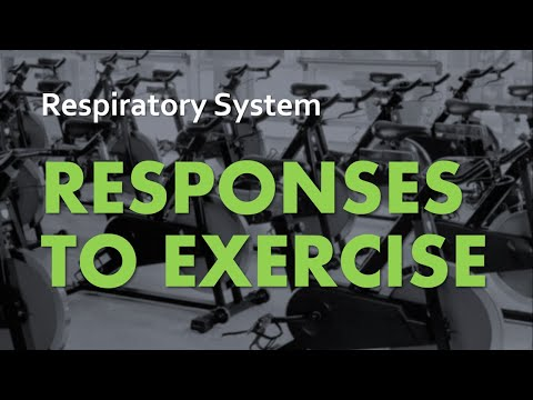 Responses to Exercise | Respiratory System 06 | Anatomy & Physiology