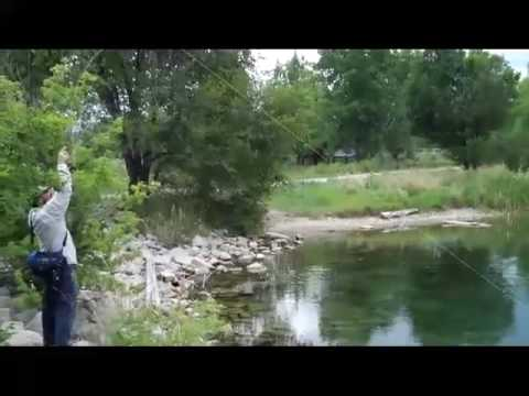 Small Pond Catfishing (10LB Channel Catfish) from YouTube · High Definition · Duration:  6 minutes 21 seconds  · 771 views · uploaded on 7/1/2016 · uploaded by MidWest Fishing