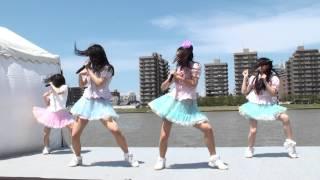 2013/05/04 信濃川右岸NST前やすらぎ堤 信濃川感謝祭2013 やすらぎ堤川...