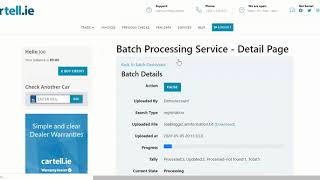 Cartell Customer Guide: How to Use the Batch Processing Service