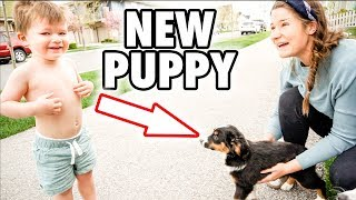 We SURPRISED Our Son with His FIRST EVER NEW PUPPY!  ***CUTEST REACTION***